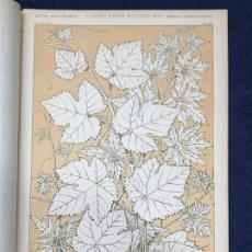 Arte: * HOJAS NATURALEZA * LEAVES FROM NATURE Nº 2 - GRAMMAR OF ORNAMENT / JONES OWEN - 1868. Lote 192247836