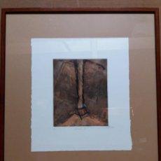 Arte: LITOGRAFÍA NUMERADA Y FIRMADA. Lote 193710247