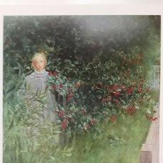 Arte: CARL LARSSON : IN THE HAWTHORN HEDGE. LITOGRAFÍA ORIGINAL CON MATRÍCULA LEGAL DE EDICIÓN. Lote 194618228