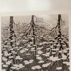 Arte: M.C. ESCHER : THREE WORLD, 1955. LITOGRAFÍA ORIGINAL CON MATRÍCULA LEGAL DE EDICIÓN. Lote 194623316