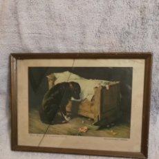 Arte: CUADRO CEREGUMIL. EL COMPAÑERO PERDIDO. COLECCION ESTAMPAS MEDICAS. GUSTAVO HENRY MOSLER. Lote 194911980