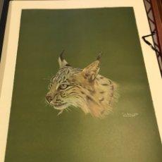 Arte: CARPETA CON 10 LITOGRAFÍAS DE JOSÉ LUIS DOMÍNGUEZ SOBRE ANIMALES DE CAZA. Lote 199456711