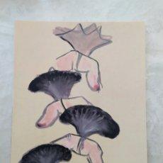 Arte: EVA LOOTZ. Lote 199590412