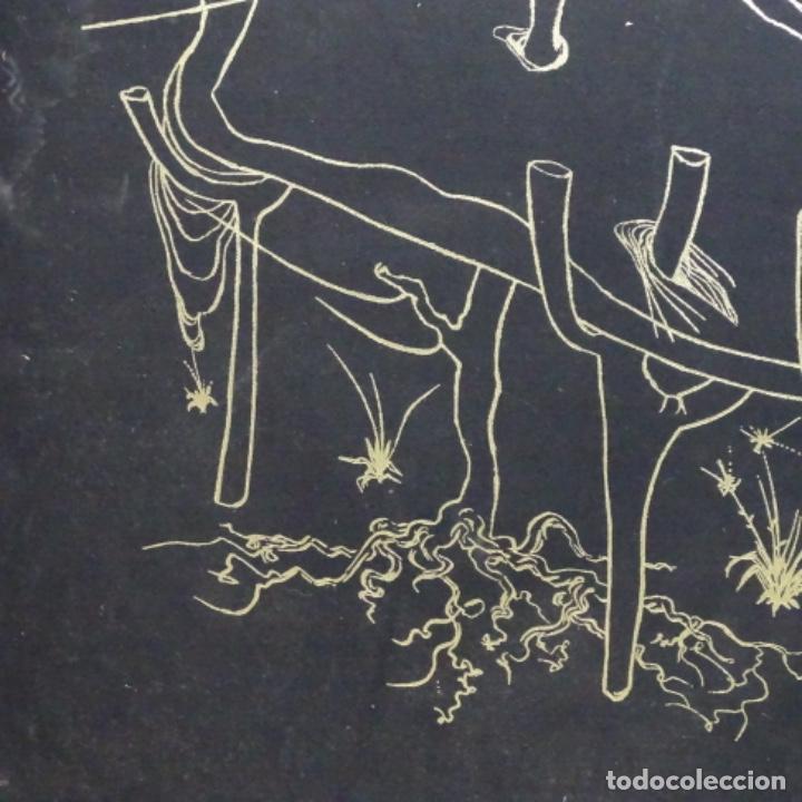 "Arte: Gran carpeta de litografías ""la conqûete du cosmos"" de dali.(solo carpeta). - Foto 9 - 199648531"
