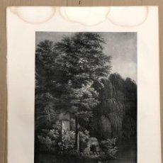 Arte: LITOGRAFIA UNA PARTE DEL ESTANQUE DE LOS PECES EN EL REAL SITIO DE ARANJUEZ. C. 1835. Lote 202552528