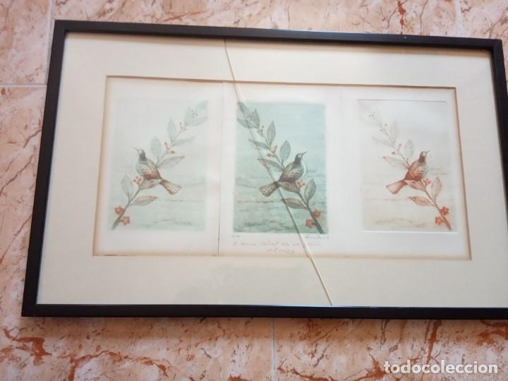 TRES LITOGRAFIAS DE PAJAROS DEDICADAS Y FRIMADAS EN 1989 (Arte - Litografías)