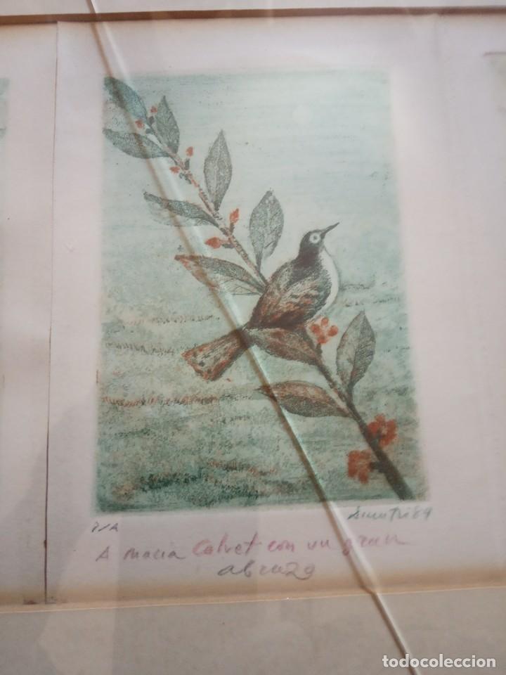 Arte: TRES LITOGRAFIAS DE PAJAROS DEDICADAS Y FRIMADAS EN 1989 - Foto 3 - 205364102