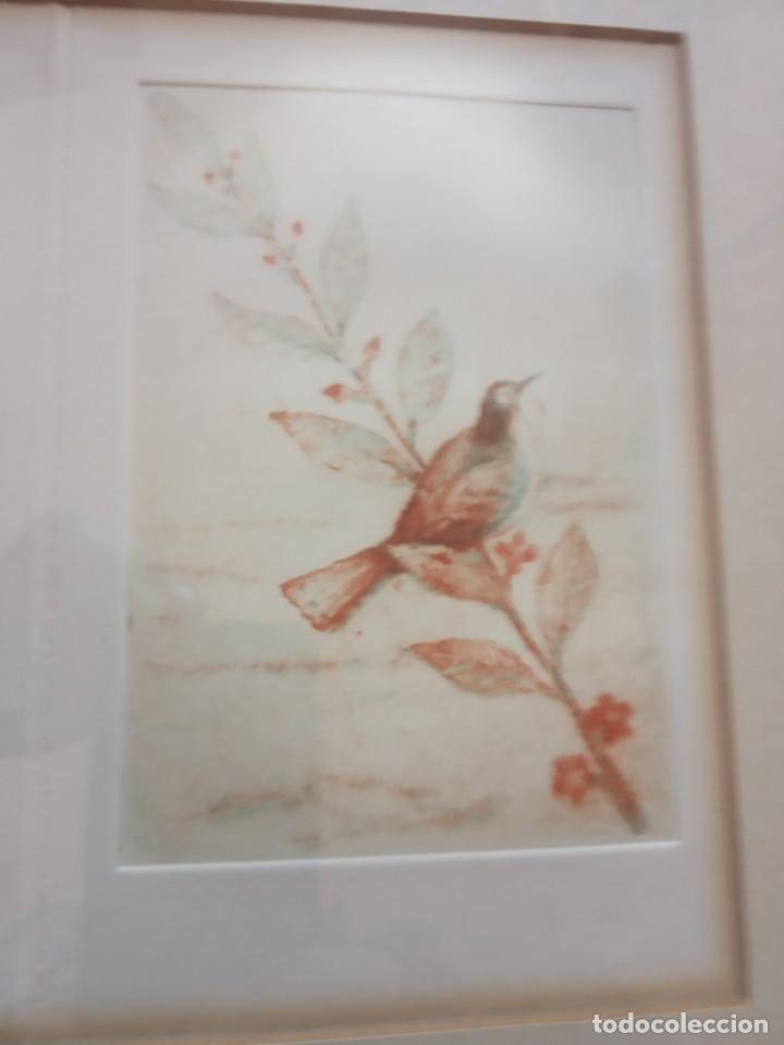 Arte: TRES LITOGRAFIAS DE PAJAROS DEDICADAS Y FRIMADAS EN 1989 - Foto 4 - 205364102