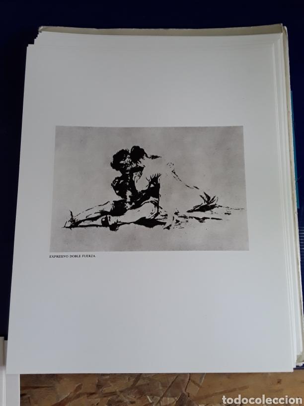 Arte: Coleccion de 22 litografías de GOYA(estudio previo del profesor Federico torralba) - Foto 9 - 208777101