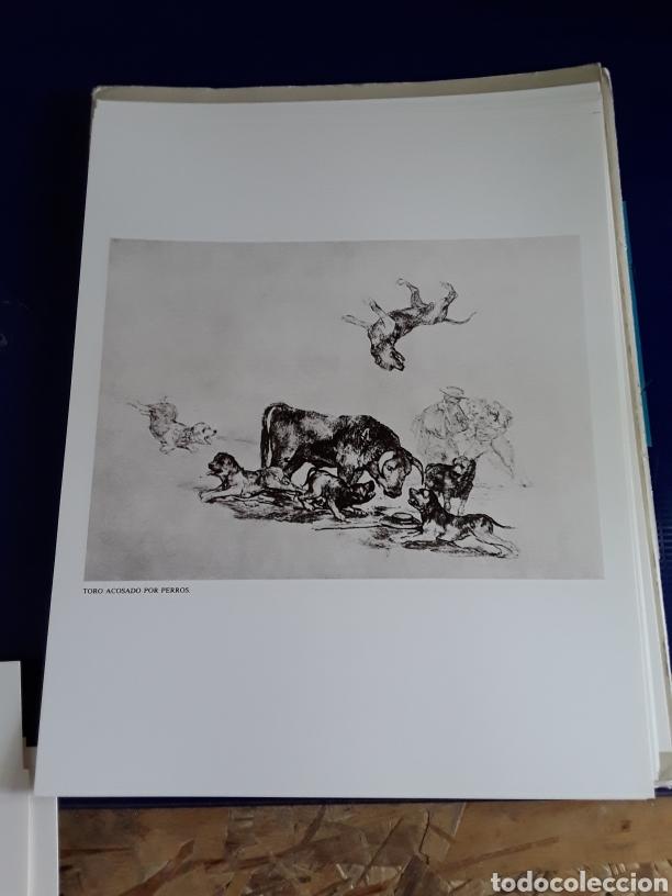 Arte: Coleccion de 22 litografías de GOYA(estudio previo del profesor Federico torralba) - Foto 18 - 208777101