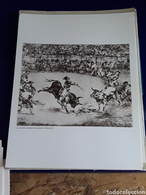 Arte: Coleccion de 22 litografías de GOYA(estudio previo del profesor Federico torralba) - Foto 19 - 208777101