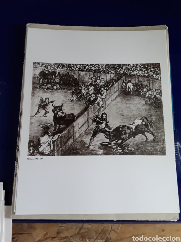 Arte: Coleccion de 22 litografías de GOYA(estudio previo del profesor Federico torralba) - Foto 22 - 208777101