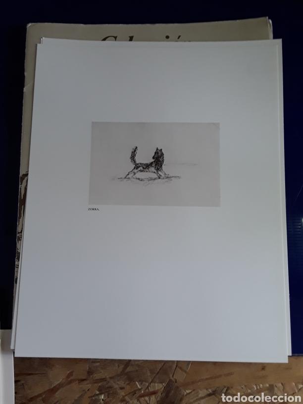 Arte: Coleccion de 22 litografías de GOYA(estudio previo del profesor Federico torralba) - Foto 23 - 208777101