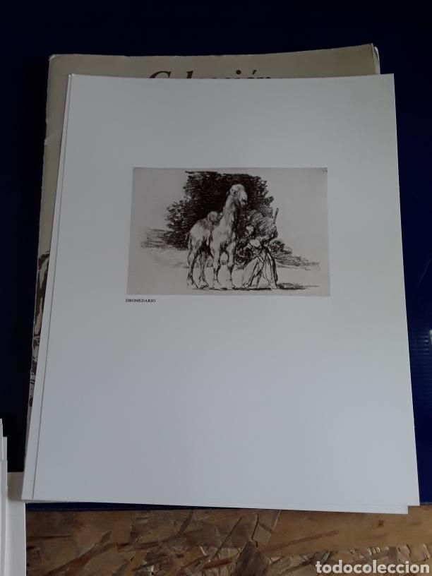 Arte: Coleccion de 22 litografías de GOYA(estudio previo del profesor Federico torralba) - Foto 24 - 208777101