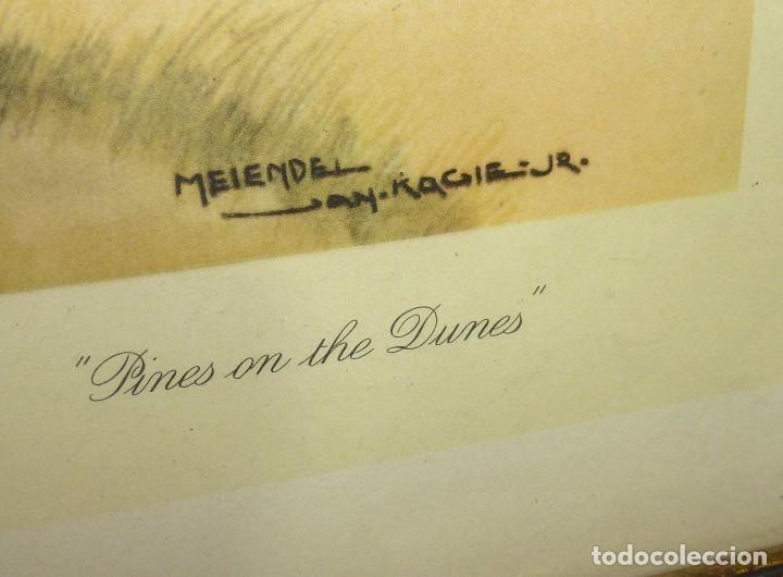 Arte: Litografia Enmacada - Jan Kaige Jr - Meiendel - Pines On The Dunes.93 x 67 Cm. - Foto 4 - 208899020