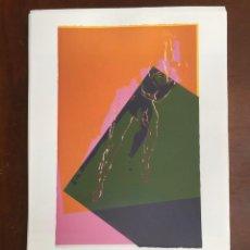 Arte: ANDY WARHOL LITOGRAFIA 57 X 38 ARCHES FRANCE TIMBRI GALLERIE D' ARTE. Lote 211886533