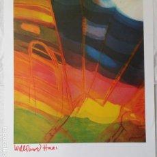 Arte: WILLIBRORD HAAS, LITOGRAFIA FIRMADA A MANO. Lote 212625171