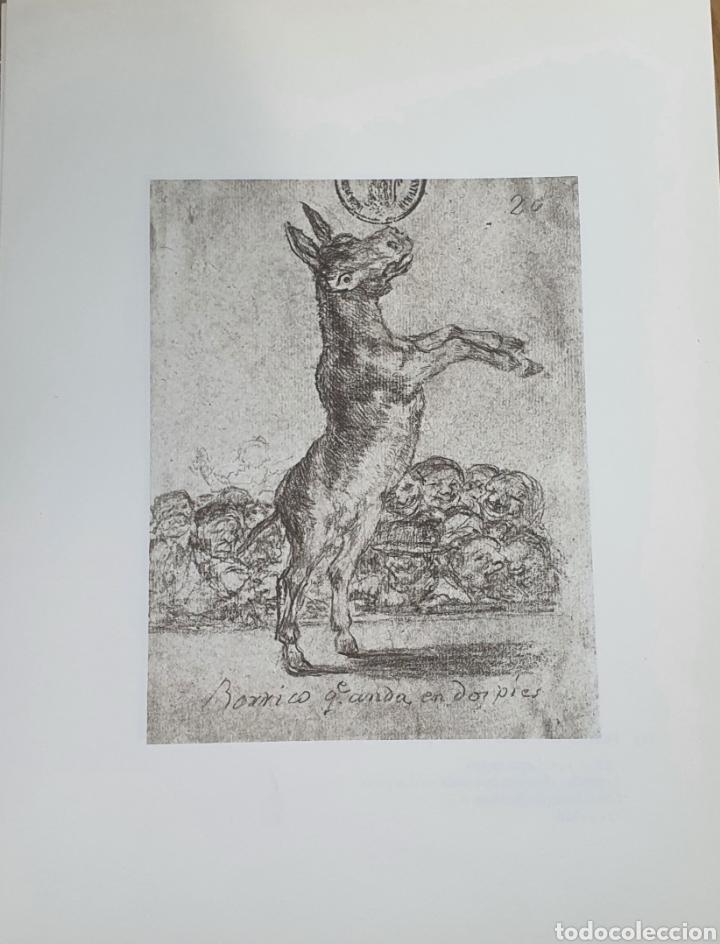 LITOGRAFIA DE GOYA. BORRICO ANDA EN DOS PIES. 113 (INV 376) 192X151 DEL ÁLBUM DE BURDEOS 1824-1828 (Arte - Litografías)