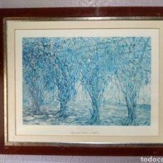 Arte: LITOGRAFÍA NUMERADA ( MALARET ) - SOMBRA TEJIDA EN MALVA.. Lote 222348051