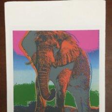Arte: ANDY WARHOL LITOGRAFIA 57 X 38 ARCHES FRANCE TIMBRI GALLERIE D' ARTE. Lote 225764845