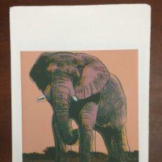 Arte: ANDY WARHOL LITOGRAFIA 57 X 38 ARCHES FRANCE TIMBRI GALLERIE D' ARTE. Lote 225764945