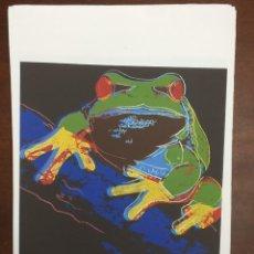 Arte: ANDY WARHOL LITOGRAFIA 57 X 38 ARCHES FRANCE TIMBRI GALLERIE D' ARTE. Lote 225764995
