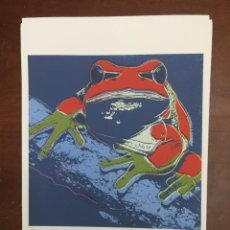 Arte: ANDY WARHOL LITOGRAFIA 57 X 38 ARCHES FRANCE TIMBRI GALLERIE D' ARTE. Lote 225765045