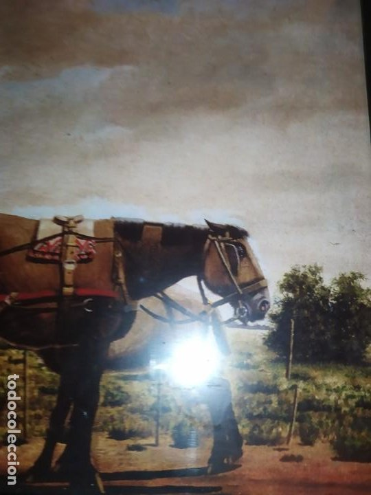 Arte: LOTE TRES LITOGRAFIA ORIGINAL DE F.MOLINA CAMPOS ENMARCADAS CRISTAL - Foto 11 - 225919550
