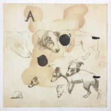 Arte: GEORG MASSANÉS - GRABADO -. Lote 242178335