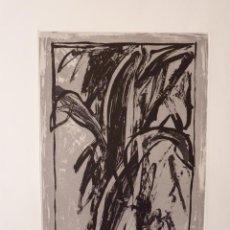 Arte: LITOGRAFIA DE JOAN HERNANDEZ PIJUAN PLANTA DE INTERIOR 1985. Lote 244439325