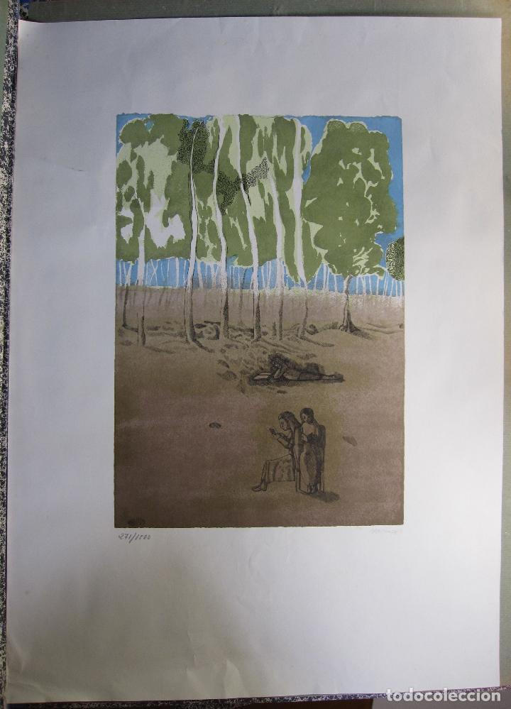 Arte: JORGE CASTILLO. EL ARBOL Y EL LIBRO. 1978. LITOGRAFIA. FIRMADA. NUMERADA 271/ 1500 - Foto 3 - 260078920