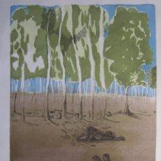 Arte: JORGE CASTILLO. EL ARBOL Y EL LIBRO. 1978. LITOGRAFIA. FIRMADA. NUMERADA 271/ 1500. Lote 260078920