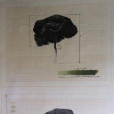 Arte: HERNANDEZ PIJUAN. EL PAPER EN LA CULTURA. LITOGRAFIA. 1976. 76 X 55 CM. EJEMPLAR 1095/1100. Lote 260565400
