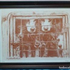 Arte: MIGUEL ANGEL BEDATE- LAMINA PERROS CACERIA- NUMERADA Y FIRMADA A LAPIZ. Lote 270259723