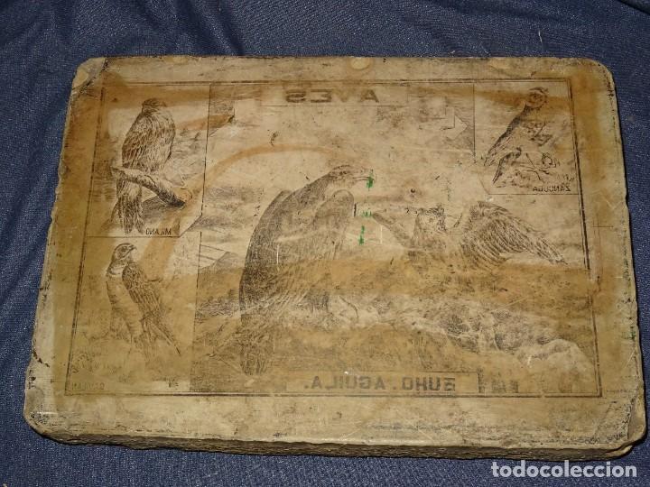 Arte: (M) PIEDRA LITOGRAFICA PARA IMPRIMIR FINALES S.XX, TEMÁTICA AVES Y PAJAROS, 38X27,5X5CM - Foto 4 - 277691998