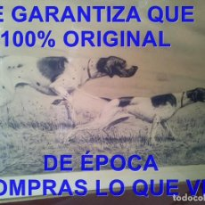 Arte: LEON DANCHIN ANTIGUO GRABADO PERROS POINTERS CAZA LITOGRAFIA NUMERADO Y FIRMADO A GRAFITO. Lote 295475163