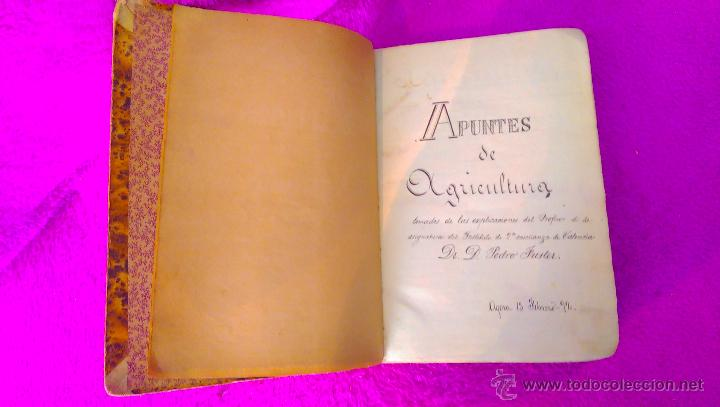 Arte: MANUSCRITO DE AGRICULTURA, DR. D. PEDRO FUSTER GALBIS 1890 - Foto 2 - 46511697