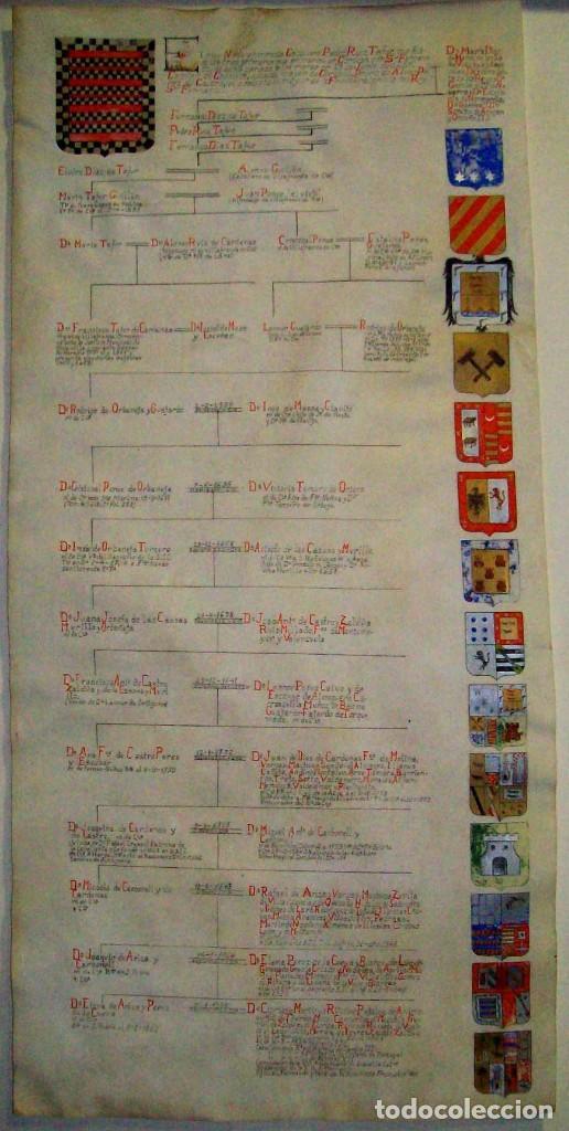 PERGAMINO O CARTULINA ANTIGUA HERALDICA Y GENEALOGIA CON ESCUDOS NOBILIARIOS DE FAMILIA MED 77X37CM (Arte - Manuscritos Antiguos)