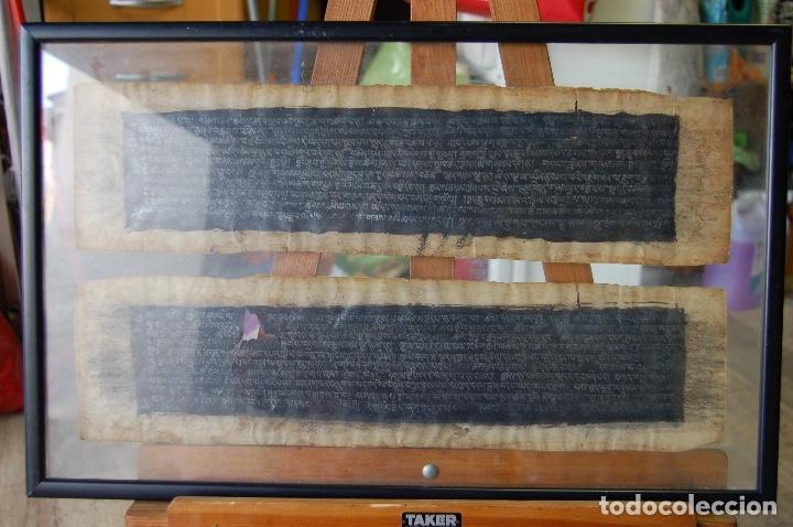 MANUSCRITO TIBETANO. ENMARCADO DOBLE CRISTAL DE 56 X 35,5. SON DOS TIRAS DE 12,5 X 48. (Arte - Manuscritos Antiguos)