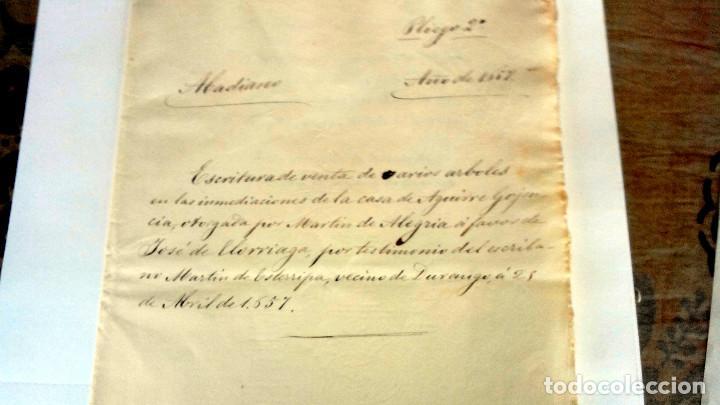Arte: TRES ESCRITURAS DE ABADIANO CASA Y ARBOLES DE AGUIRRE GOJENCIA 1654-1657-1669. 28 pag manuscritas. - Foto 3 - 159615554