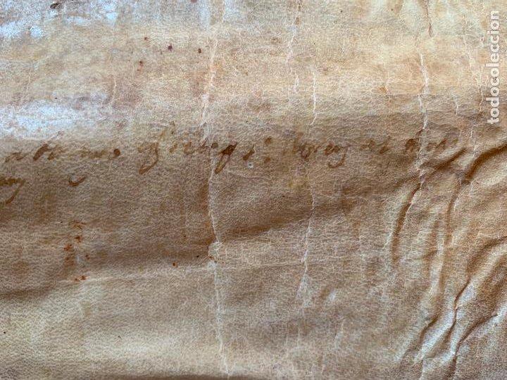 Arte: ANTIGUO PERGAMINO, ANCIENT PARCHMENT, EN PIEL. INTERESANTES FIRMAS Y CAPITULAR. Mide aprox 34x28cms - Foto 17 - 205762433