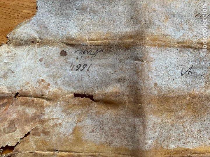 Arte: antiguo pergamino, ancient parchment , de piel, manuscrito. Ver fotos - Foto 12 - 218391528