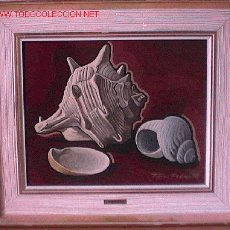 Arte: 675.- OLEO S/TABLEX 40X33 ,,,BODEGON CARACOL DE MAR,,, FERRER PEDROL 1978 CERTIFICADO 5241. Lote 26682447