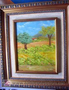 OLEO ORIGINAL CON MARCO (Arte - Pintura - Pintura al Óleo Contemporánea )