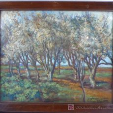 Arte: N.V. UBACH, ÓLEO SOBRE TABLA 42X34 CM. MARCO CON CRISTAL: 50 X 41 CM. Lote 19524155
