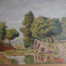 Arte: ÓLEO S/LIENZO ENMARCADO, DE ÁNGEL PLANELLS. PAISAJE FLUVIAL. DIMENSIONES.- 74,5X65,5 CMS.. Lote 27374648