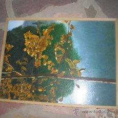 Arte: PINTURA SOBRE TABLA. Lote 21250752