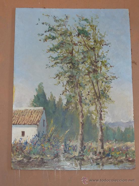 ANONIMO OLEO SOBRE TABLA DE GRAN CALIDAD. 55 CM X 40 CM. (Arte - Pintura - Pintura al Óleo Moderna sin fecha definida)