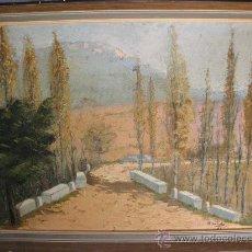 Arte: OLEO DEL PINTOR M. GALINDO - 1962 - 47 X 61 CMS SIN MARCO. Lote 30274149
