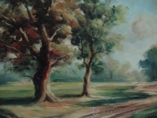Arte: bonito cuadro oleo sobre tela firmado sanz - Foto 2 - 33455957